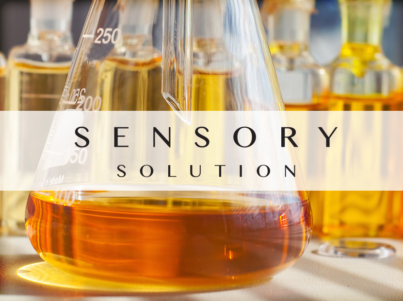 Sensory Solution Contract manufacturing Facility