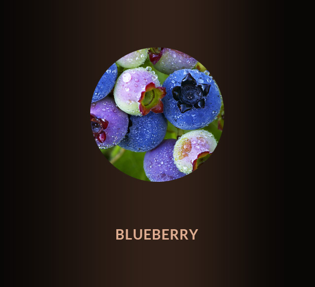 blueberry-up